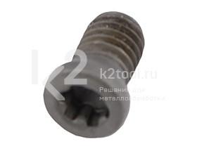 Крепежный винт для фрезерных головок кромкореза BM-16